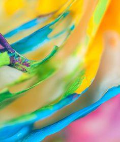 Abstract Rainbow Rose