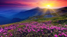 Мантра Исцеления Эта мощная и красивая мантра защищает от болезней и дарует исцеление душе и телу. Также она приносит радостное настроение, безграничное счастье и всепоглощающую любовь. ОМ ТРЙАМБАКАМ ЙАДЖАМАХЕ СУГАНДХИМ ПУШТИ ВАРДХАНАМ УРВАРУКАМИВА БАНДХАНАН МРИТЙОР МУКШИЙА МАМРИТАТ ОМ OM TRYAYAM BAKAM YAJAMAHE SUGANDHIM PUSHTI VARDANAM URVAARU KAMIVA BANDANAAN MRITYOR MUKSIYA MAAMRITAAT