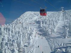 Zao Hot Spring Ski Resort, Japan.
