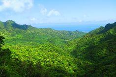 Cross Island Track Rarotonga Cook Islands view from needle