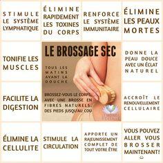Les Bienfaits du Brossage Sec   LE BROSSAGE SEC Le Monde sEveille Grâce à Nous Tous ♥