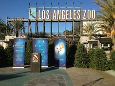 LA Zoo - went on so many field trips here as a child :)