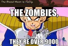 So sad. So true. Terraria Memes, Minecraft Cat, Blood Moon, Quality Memes, Fresh Memes, Terrarium, Video Games, Funny Stuff, Sad