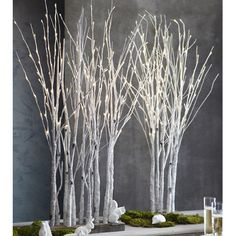 Birch Lighted Forest - 11 Main