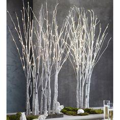 Birch Lighted Forest - 11 Main