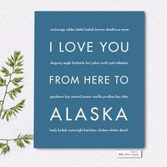 Alaska is one of the most amazing places to visit: breathtaking coastlines, magnificent mountains and moose! Whether you visited Alaska on a cruise or explored the vast state on an epic road trip, thi