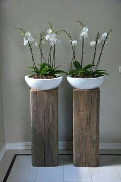 know about the trend for bathroom plants, bathroom remodel ? This 'quick . -you know about the trend for bathroom plants, bathroom remodel ? This 'quick . Bathroom Plants, Bathroom Sinks, Bathroom Green, Modern Bathroom, Custom Bathrooms, Gold Bathroom, Small Bathroom, Bathroom Trends, Bathroom Ideas