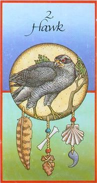 Medicine Card #2 ~ Hawk... Messenger of the sky, circle my dreams and teach me the message as we fly...  | from Medicine Cards® by Jamie Sams & David Carson © with illustrations by Angela Werneke ©
