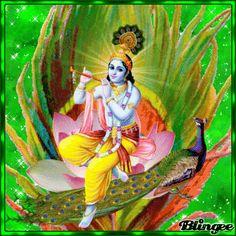 Krishna Gif, Krishna Drawing, Krishna Statue, Baby Krishna, Radha Krishna Images, Lord Krishna Images, Krishna Painting, Krishna Radha, Radha Rani
