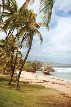 The eastern shore of Barbados, near the village of Bathsheba. Photos: Caribbean Beaches, Islands, and Surf Spots : Islands : Condé Nast Traveler