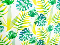 Tropical Pattern - OYE is a graphic design studio of O hezin