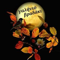 A serene evening Greek Language, Good Night, Christmas Bulbs, Holiday Decor, Beautiful, Facebook, Nighty Night, Christmas Light Bulbs, Greek