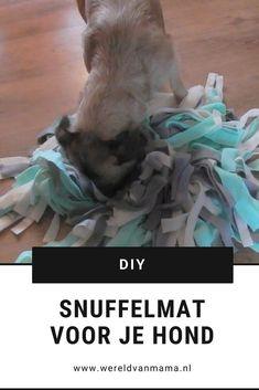 Maak zelf een snuffelmat voor je hond. Zo ontzettend leuk! Floki, Dog Games, Website, Easy Peasy, Creative Inspiration, Yorkie, Puppies, Diys, Barbecue