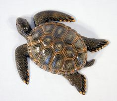 "Handpainted Tropical Sea Turtle Beach Tiki Bar Wall Mount Decor Plaque Kid Decor 8"" Brown"