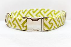 Summer Dog Collar in Green and White on Etsy, $25.00