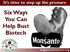 The jig's up. The global anti-GMO, pro-organic grassroots are nearing critical mass. But there's still work to do. Now is the time to step up the pressure, not sit back and relax.  Here are six ways you can help bust biotech!