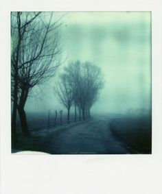 Fog by Tiziano Terzi, Impossible PX 70 Color Protection #impossible #polaroid