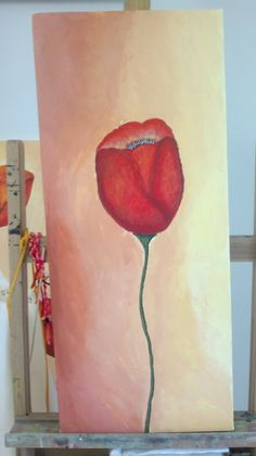 tulipan solitario