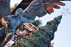 Tarde del 2 de enero del 2017 en Valle de Bravo en el embarcadero. De fondo el árbol de Navidad.