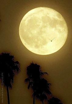 Photography: Sky, Photo credits: Helena Simões da Costa © Photography 2016. Outros trabalhos fotográficos meus: http://helenasimoesdacosta.wixsite.com/helencostafotografia , e o meu novo blog onde publico poemas, fotografias e outros textos da minha autoria: http://helenasimoesdacosta.wixsite.com/helencostafotografia/blog. #sky #clouds #moon