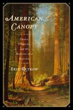 American Canopy by Eric Rutkow. It's a history of the United States via the trees we harvested to build it.