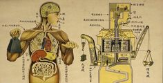 The Human Body as Industrial Factory on 1933 Chinese Health Education Posters | Earthly Mission