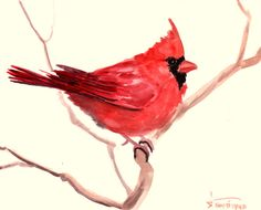 Northern Cardinal red original watercolor painting by ORIGINALONLY, $24.00