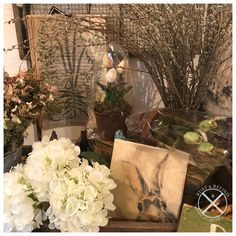 Spring is in the air! A sneak peak at our garden-themed corner with Peak-a-Boo bunny canvas art, faux florals, pussy willows, botanicals and more. American Decor, Vignettes, Florals, Rust, Canvas Art, Bunny, Corner, Spring, Garden