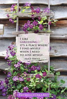I like gardening—it's a place where I find myself when I need to lose myself. ~Alice Sebold # Gardening quotes 37 Favorite Garden Quotes, Memes, and Quirky Expressions Landscape Designs, Landscape Architecture, Dream Garden, Garden Art, Garden Stakes, Organic Gardening, Gardening Tips, Gardening Gloves, Gardening Supplies