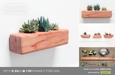 hmm_ep71_succulentplanter_pcard.png (820×542)