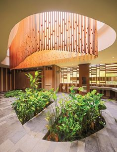 DP architects initiates river safari as an immersive journey Interior Exterior, Interior Garden, Home Interior Design, Biophilic Architecture, Interior Architecture, Landscape Architecture, Dp Architects, Food Court Design, Timber Ceiling