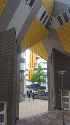 Rotterdam  Hugo Scheurwater