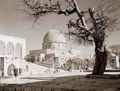 Dome of the Rock, Jerusalem | 31 Unbelievable Photographs Israel Doesn't Want You To See!