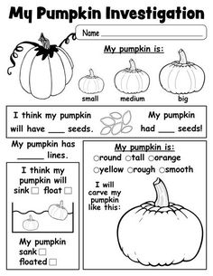 Free Printable Pumpkin Investigation Worksheet (use as group activity at circle, preschool is no place for worksheets) 1st Grade Science, Kindergarten Science, Elementary Science, Kindergarten Worksheets, Elementary Schools, Teaching Science, Fall Preschool, Preschool Lessons, Science Lessons