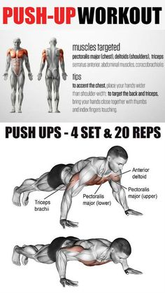 The pushup is an exercise that works almost every part of your body. You don't need any equipment or a gym membership. The pushup uses the body's weight working against gravity to strengthen muscles. A person who does push-ups can strengthen there chest, Push Up Workout, Gym Workout Chart, Gym Workout Tips, Workout Challenge, At Home Workouts, Workout Fitness, Chest Workout For Men, Chest Workouts, Video Sport