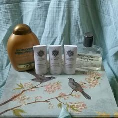Shampoo/Conditioner Lot BUNDLE AVAILABLE