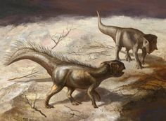 Koreaceratops hwaseongensis by ~cheungchungtat