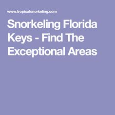 Snorkeling Florida Keys - Find The Exceptional Areas