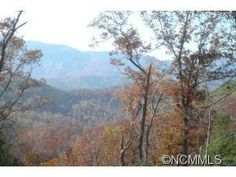 Over 21 acres off Hwy 9 Black Mountain NC MLS # 540360