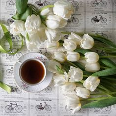 Tulips and coffee ~ two of my favorites