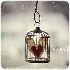 There's a time to put your heart in a cage. I Love Heart, With All My Heart, Key To My Heart, Happy Heart, Heart Art, Valentines Day Hearts, Love Valentines, My Funny Valentine, Foto Art