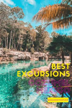 Cozumel is a great land and cruise destination. There are a variety of things to do from snorkeling, diving, day trips to cenotes, and more! #travel #mexico #cozumel #cruise #cruising #tips #familytravel #caribbean #royalcaribbean #excursions #activities #ncl #carnivalcruises #cancun #playadelcarmen