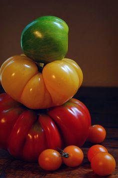 i miss you already, tomatoes -- photo by helloyarn