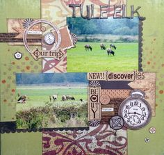 Carnation 3 @scrapbooksteals #midweekmojo #scrapbook Also using this LO to solve case 177 at http://csicolorstoriesinspiration.ning.com/