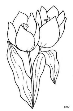 Tulip Printable Adult Coloring pages. hundreds of flowers Adult Coloring Book Pages, Printable Adult Coloring Pages, Flower Coloring Pages, Colouring Pages, Coloring Books, Mosaic Flower Pots, Borders And Frames, Flower Template, Tulips Flowers