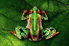 17 Incredible Body Paintings - Wall to Watch