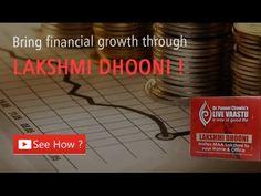 How Lakshmi Dhooni bring Financial Gains?