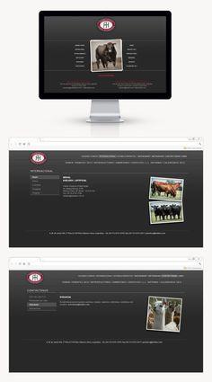 Estancia y Cabañas Las Lilas sigue confiando en DOMO dejando en nuestras manos el rediseño del sitio web según el diseño de Grupo Berro. También se realizó actualizaciones con toda la información anual de los toros como así también se actualizaron Flipbooks. Online Marketing, Web Development, Yearly, Design Web, Group