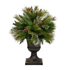 Potted Pine Cone Christmas Tree   Kirklands