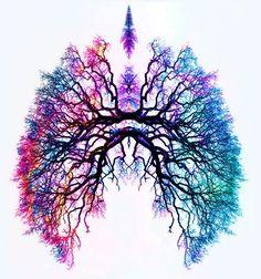 Ejercicios de Respiración para Desintoxicar los Pulmones | Alquimia Interna: Fomento y promoción del Qigong y del Taijiquan
